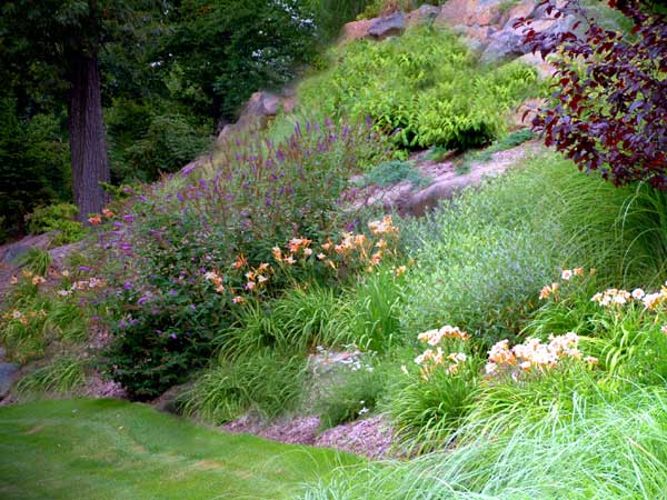 Nj front landscape design for Garden design on a slope