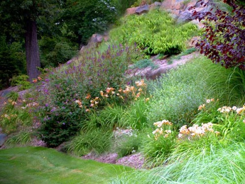 front yard slope with perennials